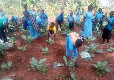 Mirembe Literacy Program - Planting in the garden